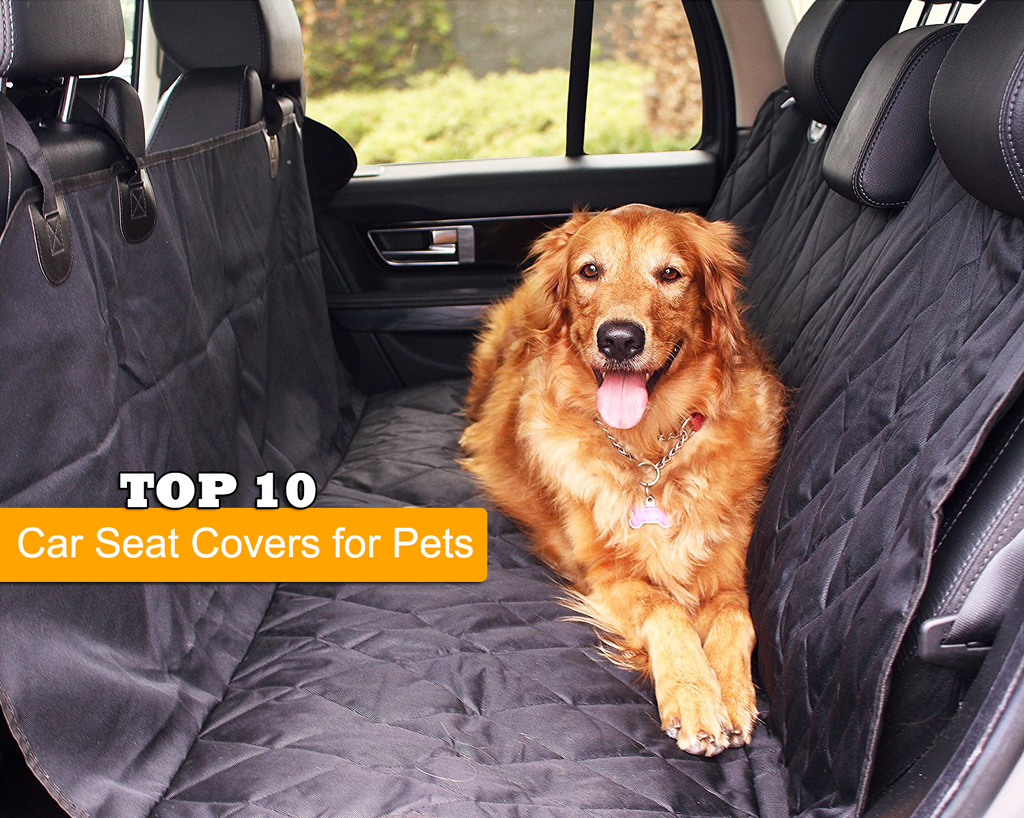 10 Best Car Seat Covers for Pets